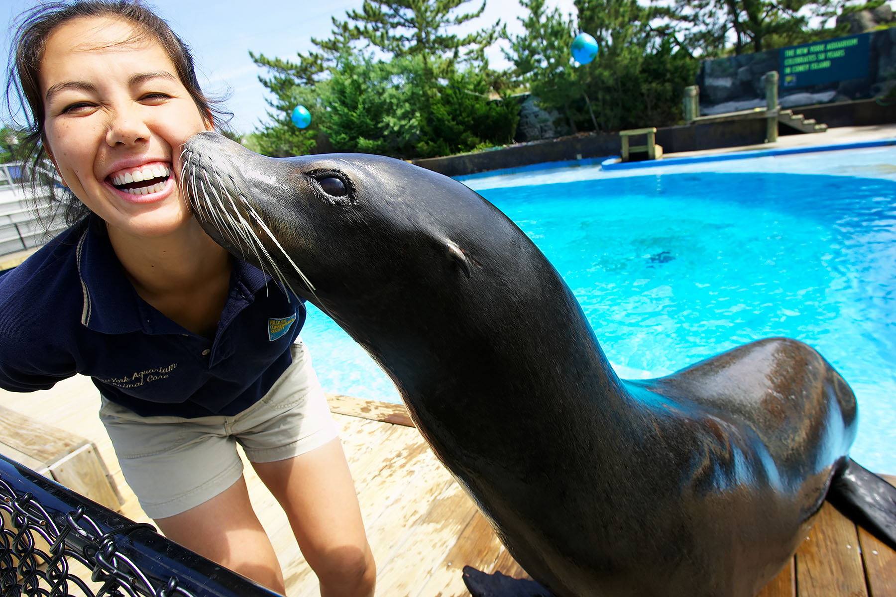 JDC 0387 Seal Kiss 07-041_126